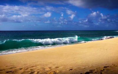 """Test: """"Călătoria imaginară pe litoral"""""""